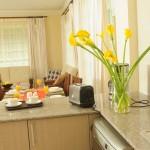 open-kitchen-view